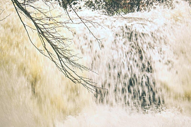 Cascade détaillée dans le dégel en montagnes photos libres de droits