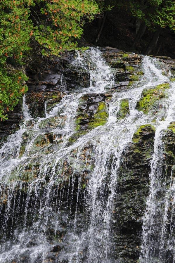 Cascade d'automnes de ruisseau de castor images libres de droits