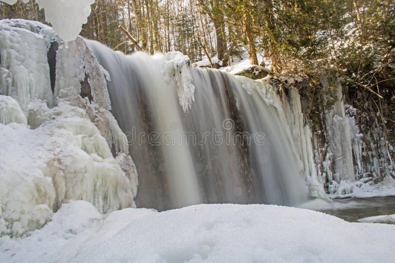Cascade d'escarpement de Niagara dans Ontario, Canada photo libre de droits
