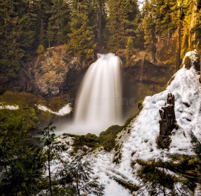 Cascade d'hiver dans la forêt image libre de droits