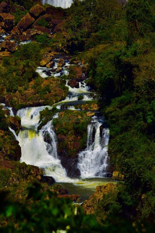 Cascade d'Iguazu photographie stock libre de droits