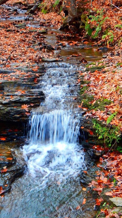 Cascade dans The Creek images libres de droits