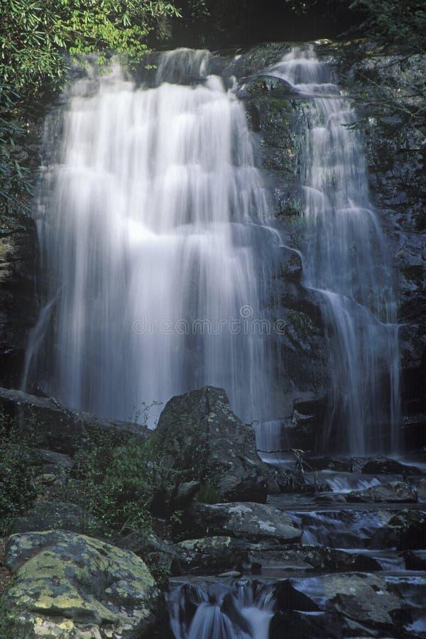 Cascade dans grand Smokey Mountain National Park, Tennessee photos libres de droits