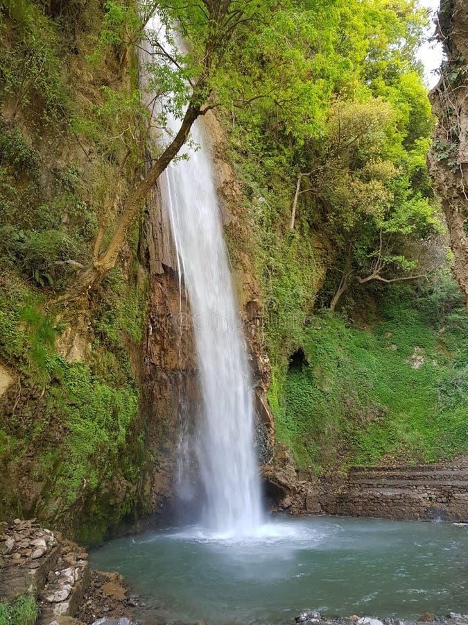 Cascade dans himachal photographie stock libre de droits