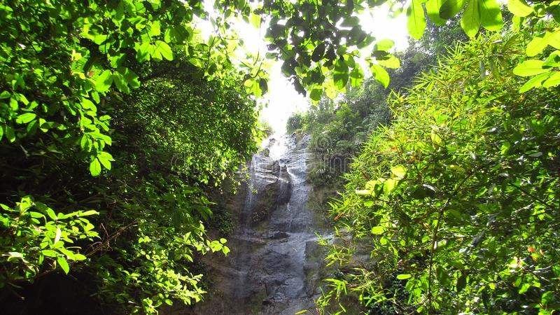 Cascade dans la forêt Ciamis Java occidental photos stock