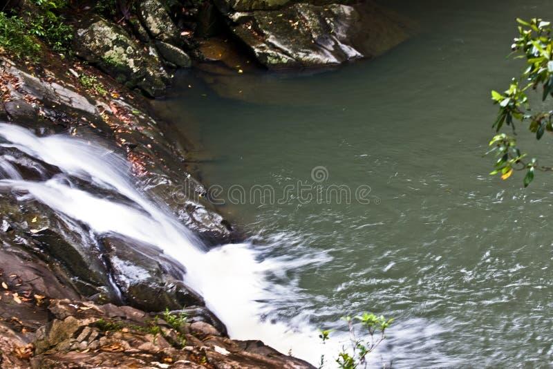 Cascade dans la forêt humide photographie stock libre de droits