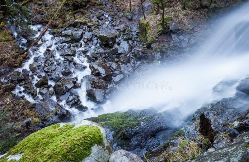 Cascade dans la forêt noire photo libre de droits
