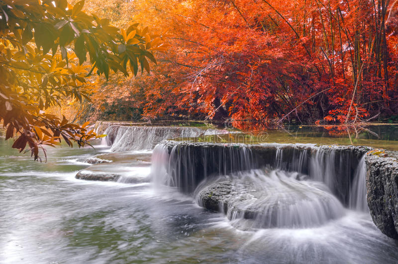 Cascade dans la forêt tropicale au parc national image stock