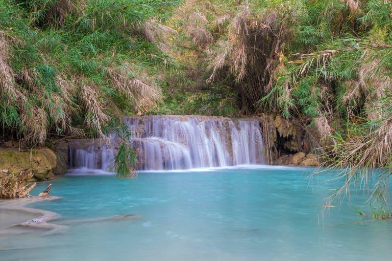 Cascade dans la forêt tropicale (Tat Kuang Si Waterfalls au praba de Luang photo stock