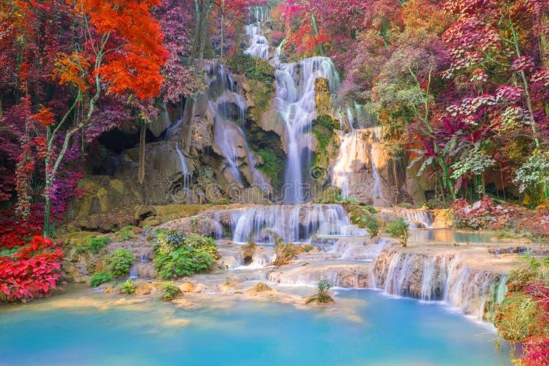 Cascade dans la forêt tropicale (Tat Kuang Si Waterfalls au praba de Luang photos libres de droits