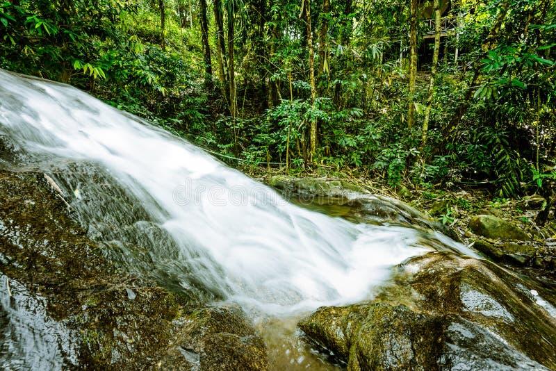 Cascade dans la jungle de forêt tropicale image stock