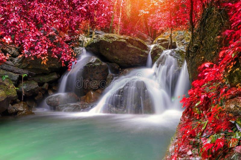 Cascade dans la jungle profonde de forêt tropicale (cascade Sarab de Krok E Dok photo stock