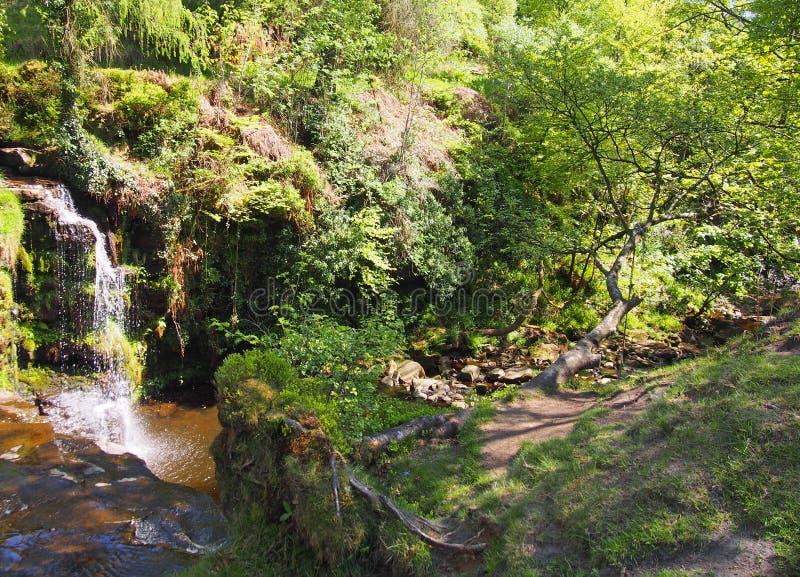 Cascade dans la région boisée au doyen de crimsworth près du pecket bien dans le calderdale West Yorkshire image stock