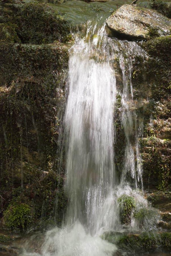 Cascade dans la for?t tropicale photos libres de droits
