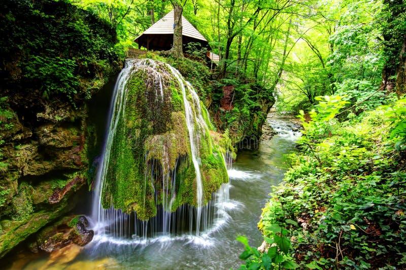 Cascade de Bigar, Roumanie photos stock