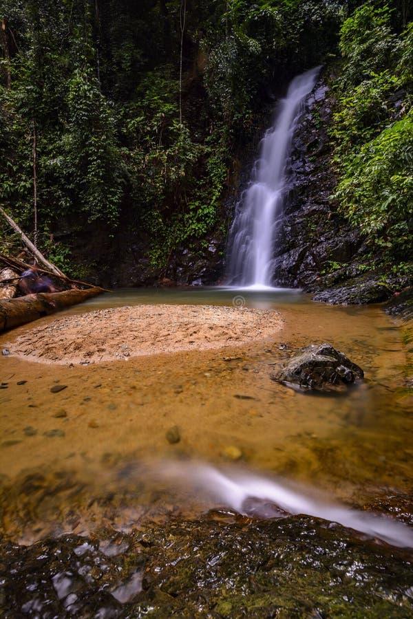 Cascade de cascade dans la jungle images stock