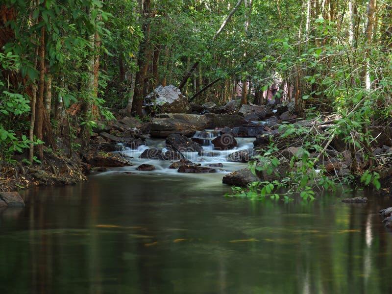 Cascade de Florence Creek, parc national de Litchfield l'australie image libre de droits