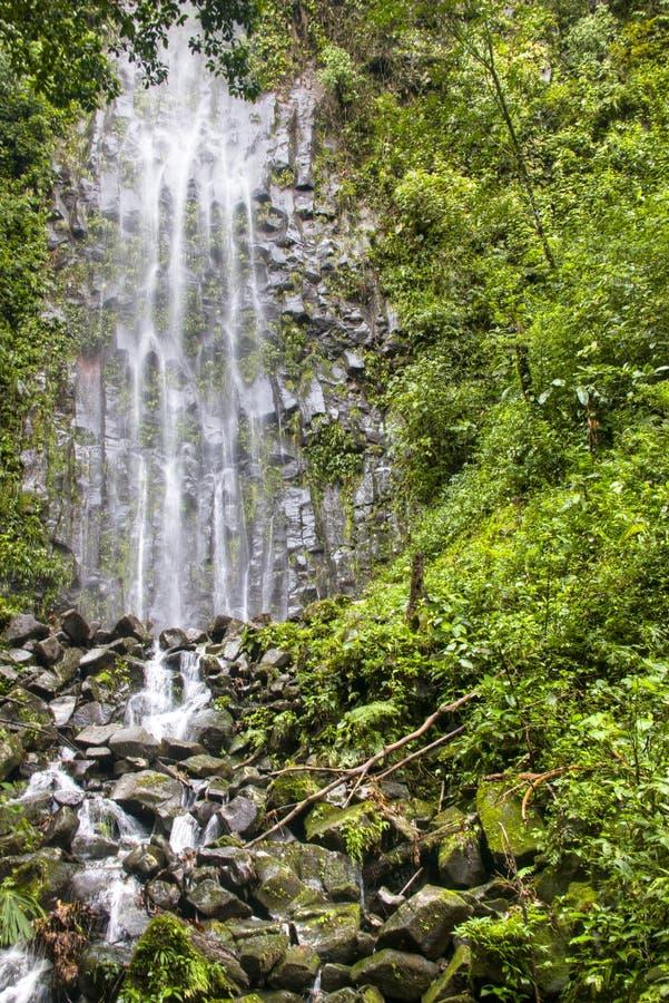 Cascade de Fortuna de La en parc national d'Arenal, Costa Rica image libre de droits