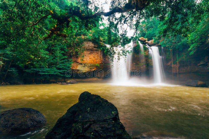 Cascade de Haew Suwat dans la forêt tropicale au parc national de Khao Yai, Thaïlande photographie stock libre de droits