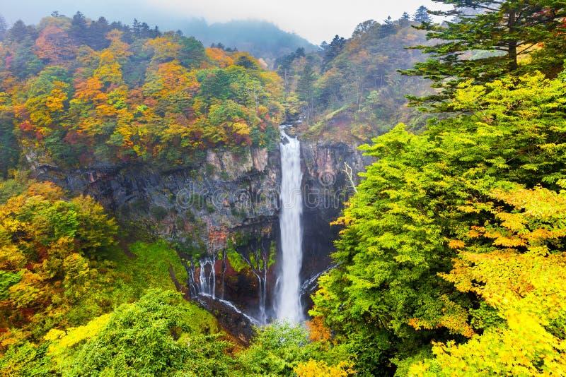 Cascade de Kegon photo stock
