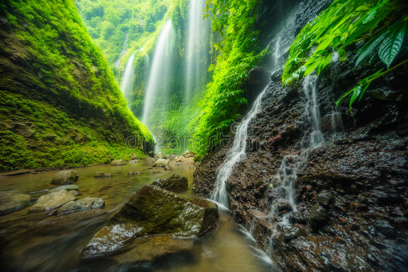 Cascade de Madakaripura photo stock