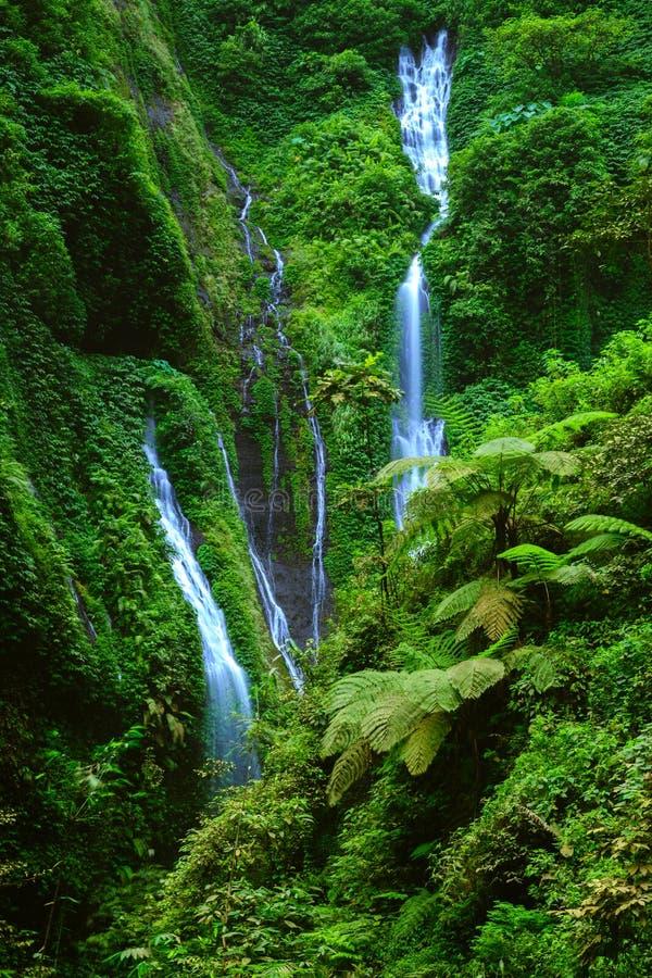 Cascade de Madakaripura, Java-Orientale, Indonésie photos libres de droits