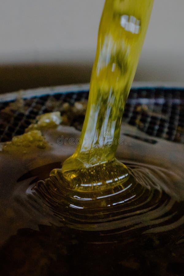 cascade de miel photo libre de droits