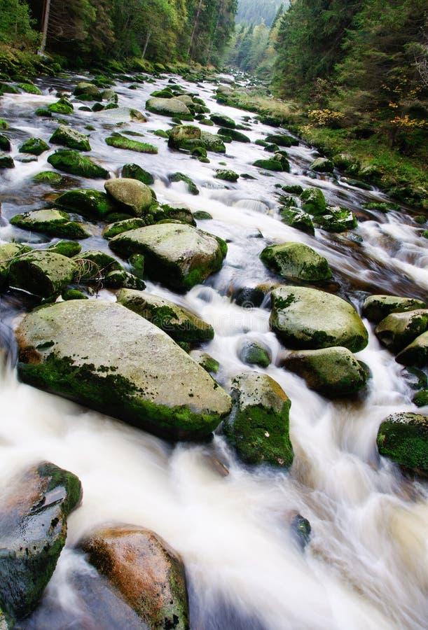 Cascade de rivière de montagne photos stock