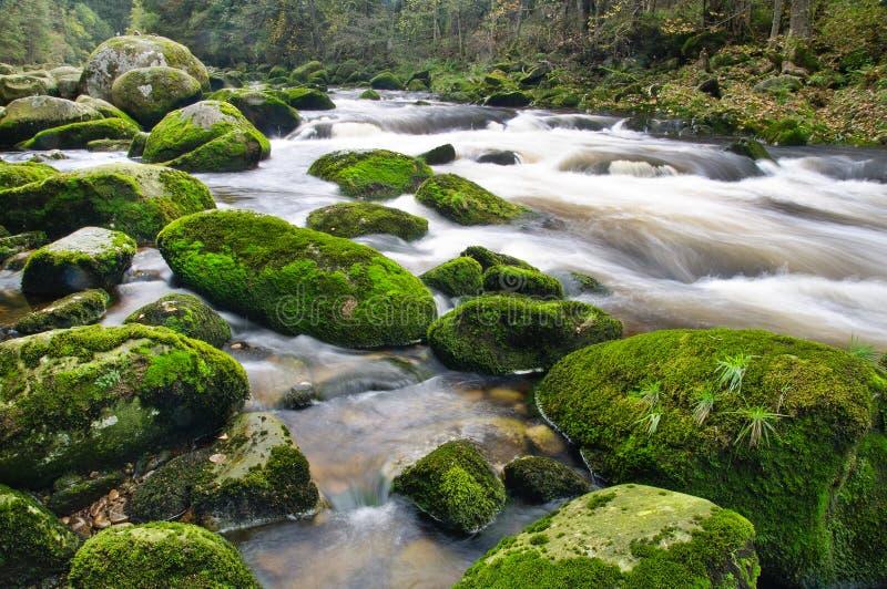 Cascade de rivière de montagne photo stock