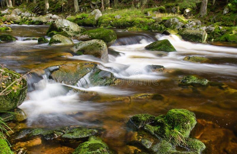 Cascade de rivière de montagne photo libre de droits