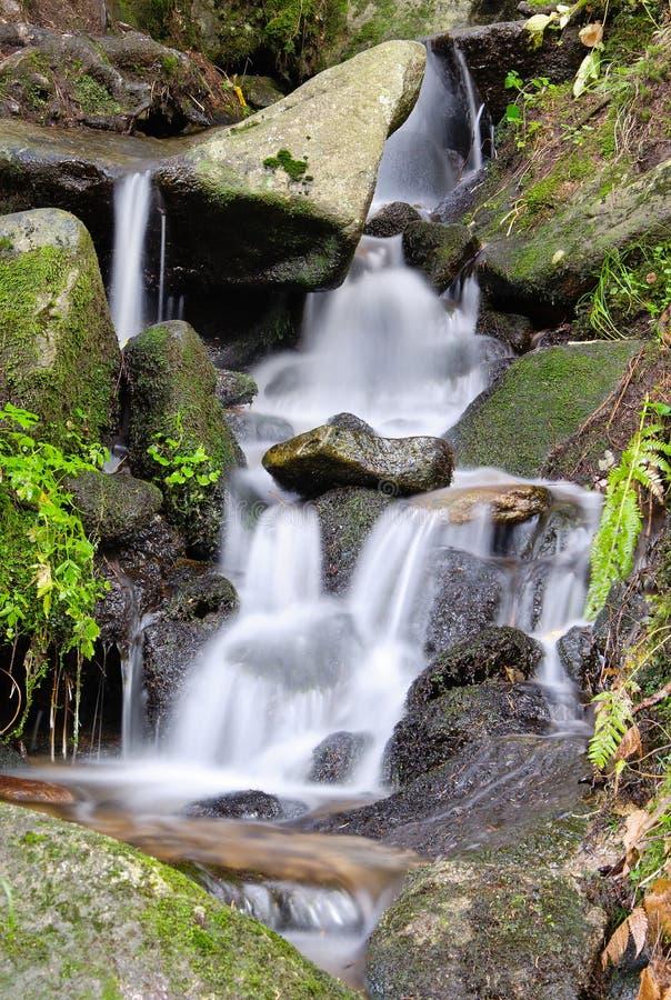 Cascade de rivière de montagne photos libres de droits