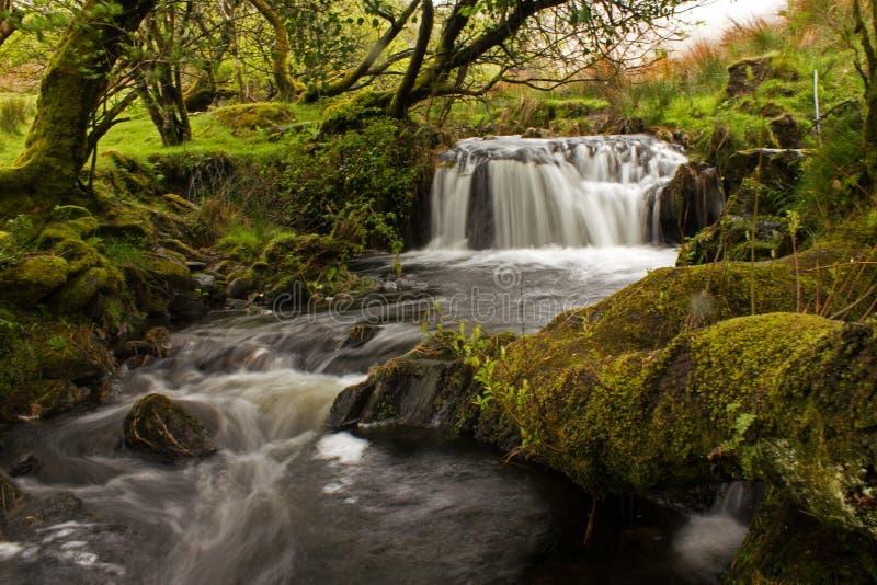 Cascade de ruisseau de bavardage image libre de droits