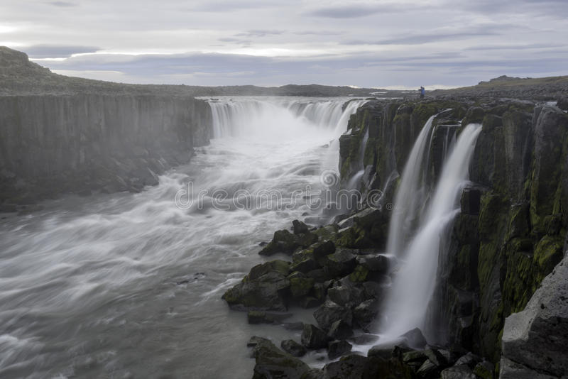 Cascade de Selfoss en parc national de Jokulsargljufur, Islande photographie stock libre de droits