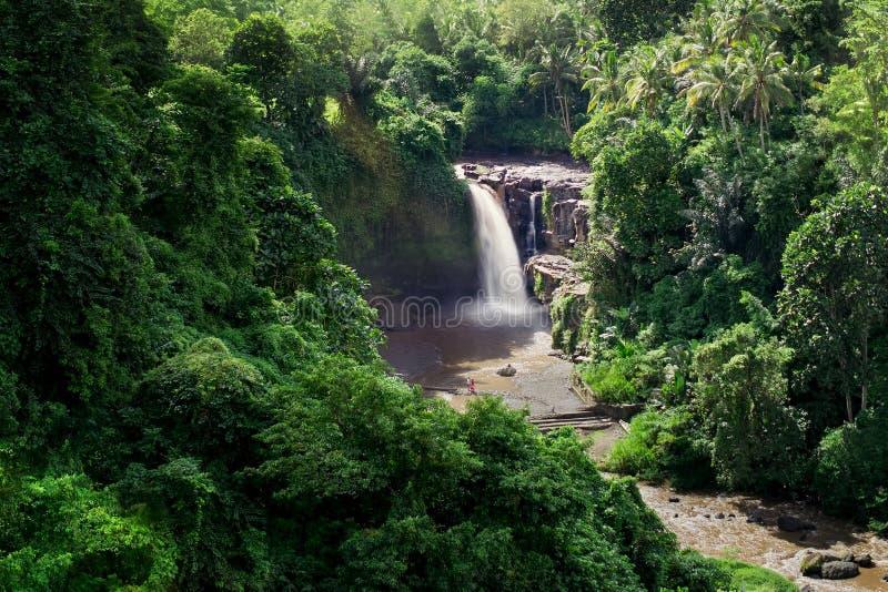 Cascade de Tegenungan dans Gianyar Bali images libres de droits