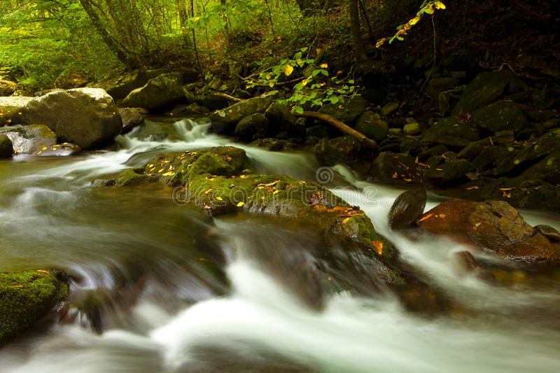 Download Cascade in deep forest stock image. Image of river, nature - 28270747