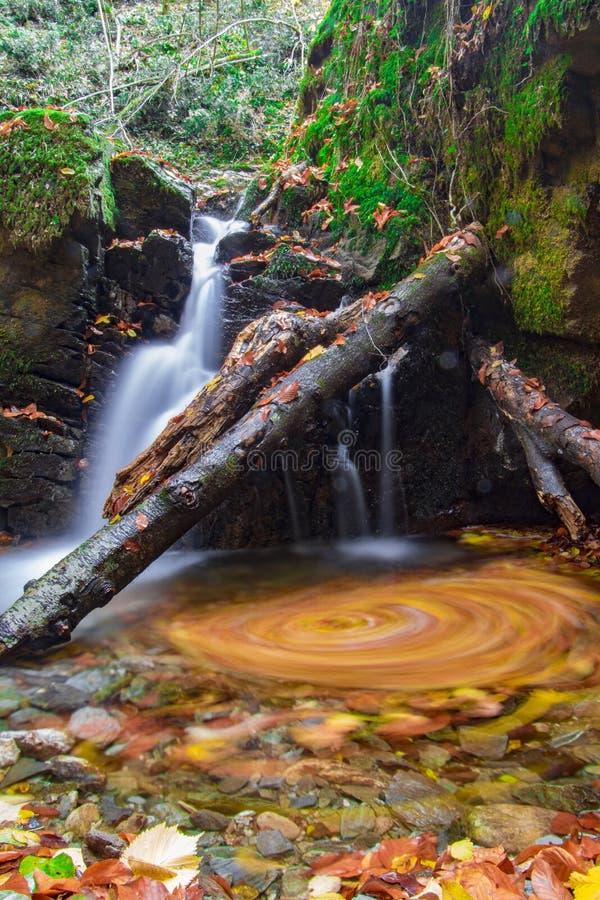 Cascade en Bulgarie, montagne de Strandzha images libres de droits