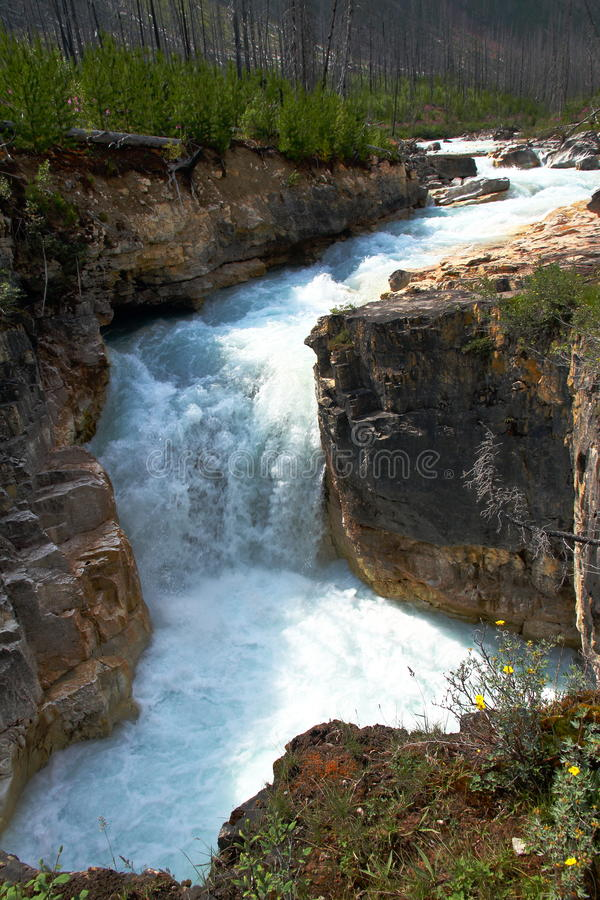 Cascade en canyon de marbre - AVANT JÉSUS CHRIST Canada photo libre de droits