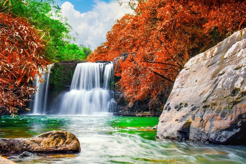 Cascade en forêt d'automne et ciel bleu image stock