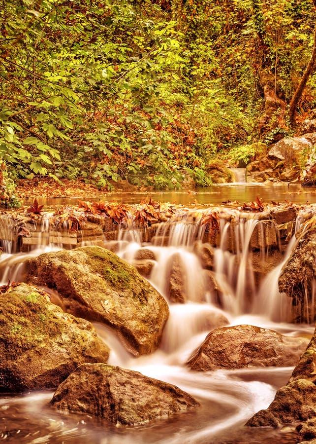 Cascade en parc d'automne photo stock