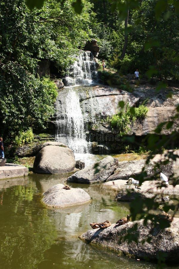 Cascade en parc de Sofiyivsky Arborétum de jardin botanique dans Uman, Cherkasy Oblast, Ukraine image libre de droits