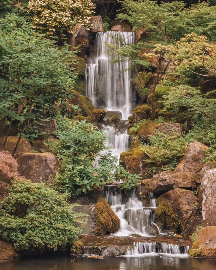 Cascade et étang de réflexion dans le jardin japonais de Portland image libre de droits