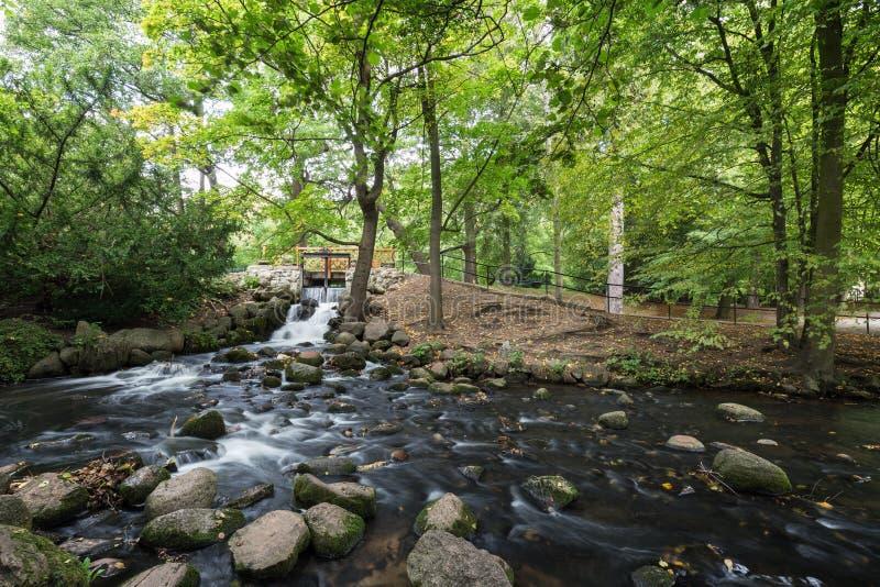 Cascade et courant au parc d'Oliwa photos libres de droits