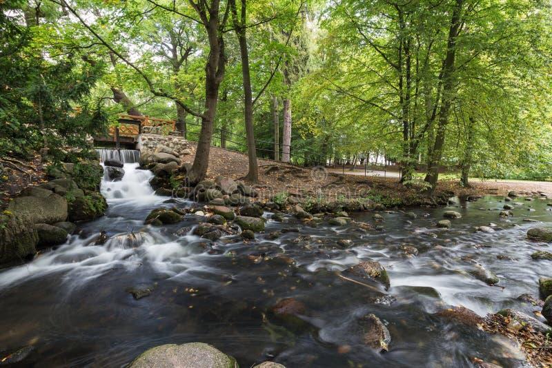 Cascade et courant au parc d'Oliwa photographie stock