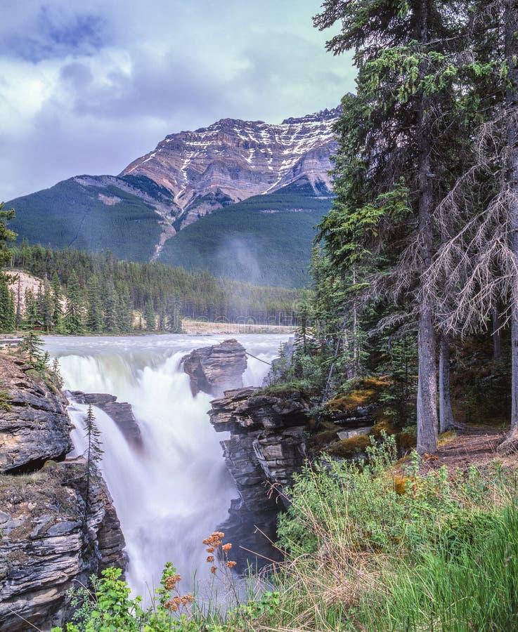 Cascade et montagnes magnifiques images stock