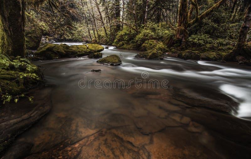Cascade et Riverflow photos libres de droits