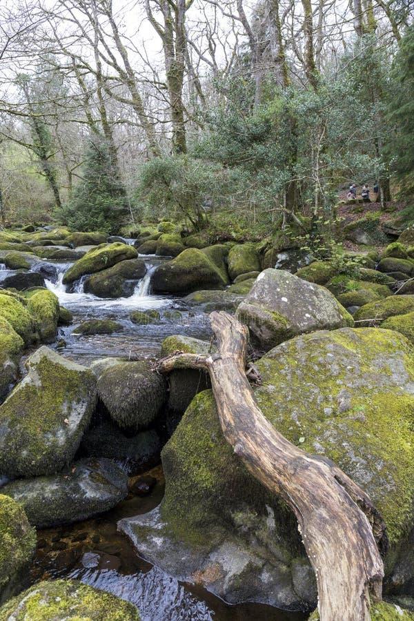 Cascade et roches moussues chez Becky Falls, Devon image libre de droits
