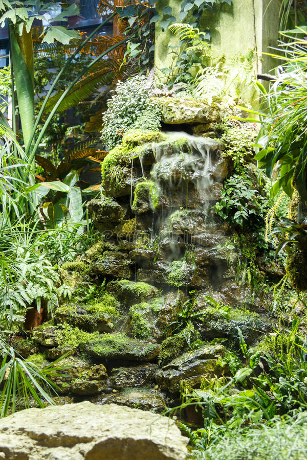 cascade et usines en pierre artificielles en serre chaude photo stock image du jardin beau. Black Bedroom Furniture Sets. Home Design Ideas