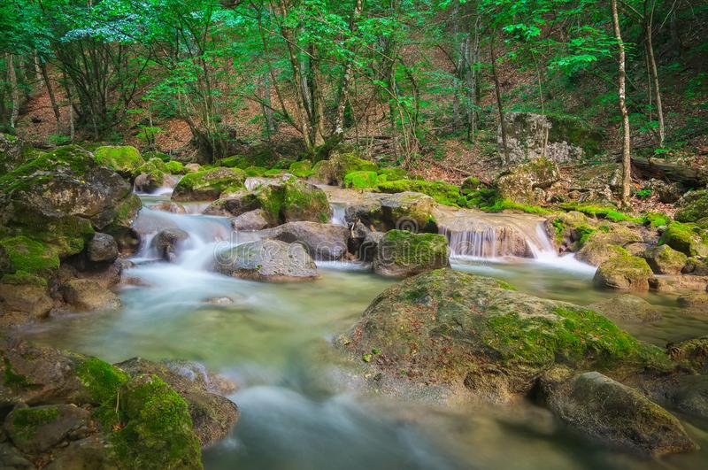 Cascade falls over mossy rocks. stock photos