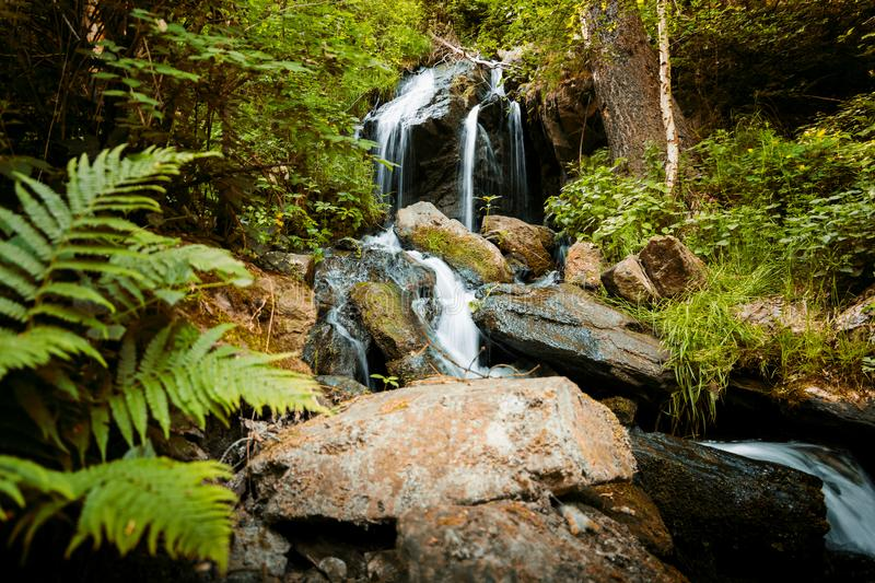 Cascade falls over mossy rocks royalty free stock photos