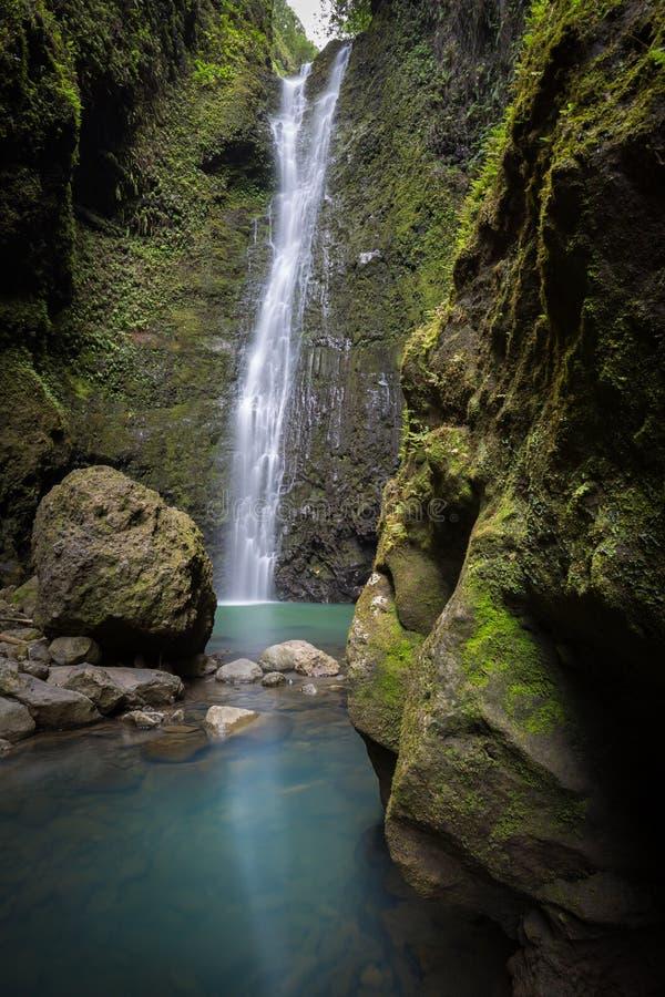 Cascade hawaïenne secrète profondément dans les jungles de Maui images libres de droits